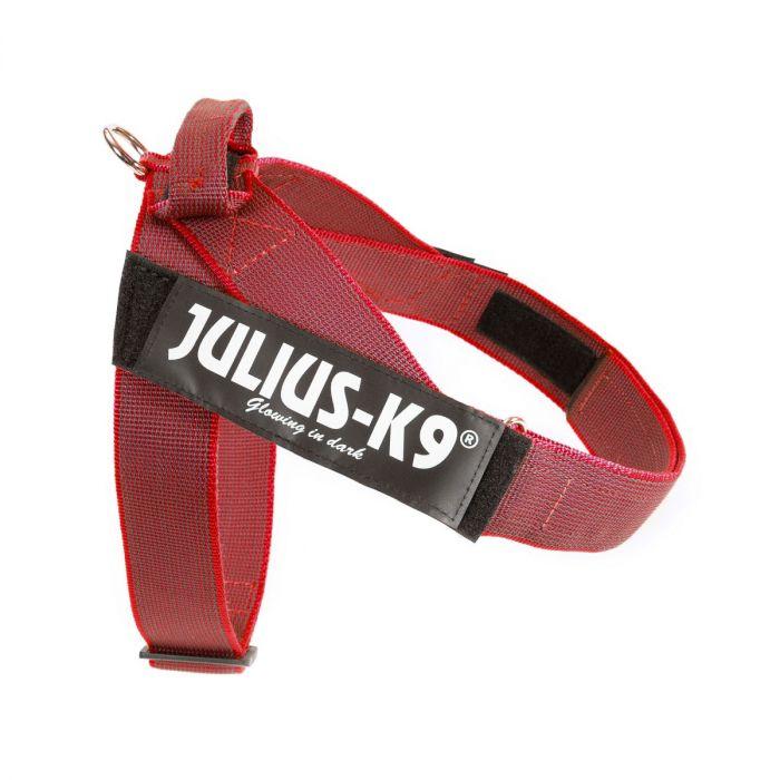arnes julius de cinta rojo