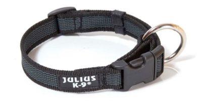 collar julius negro