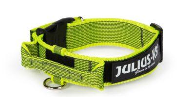 collar amarillo julius