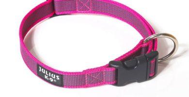 collar julius rosa